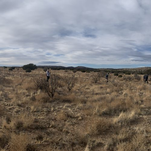 panoramic of new mexico plains