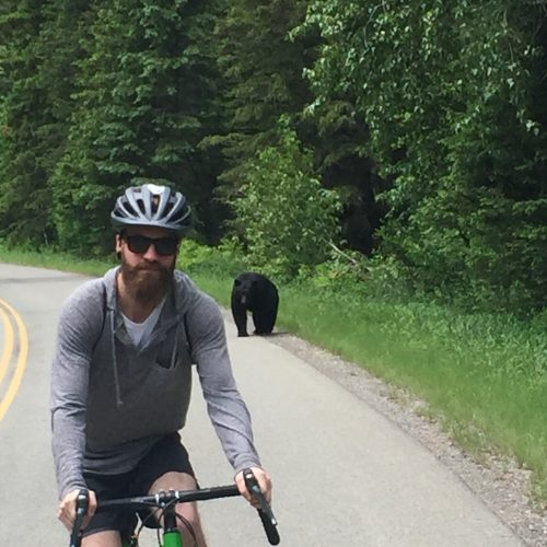 a black bear behind me on the road