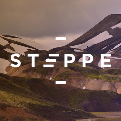 steppe logo